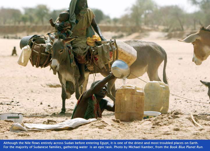 Sahara_race_camel